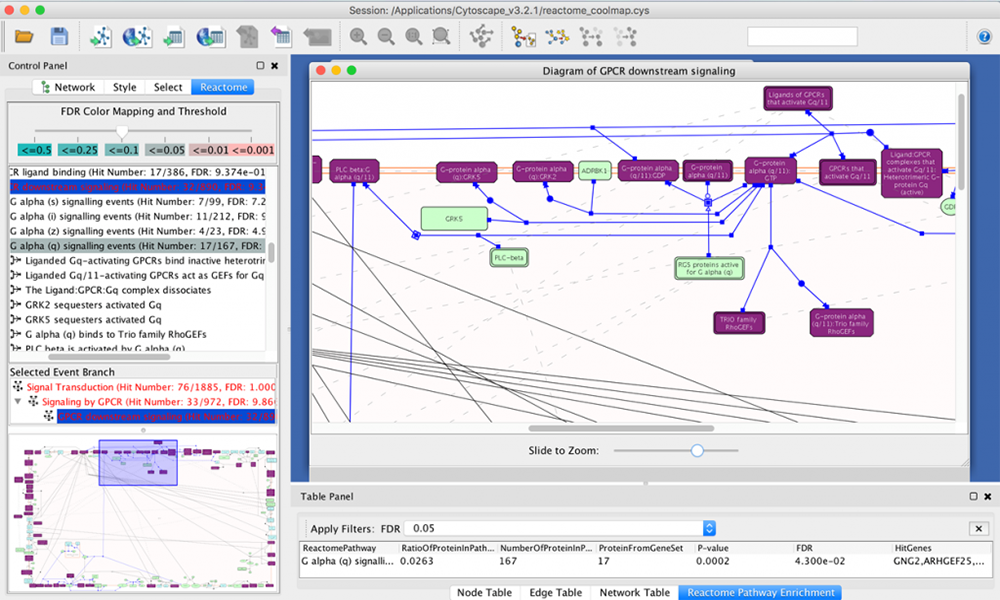 CoolMap can be used to exchange data with Cytoscape. In this example, pathway exploration in Cytoscape ueses the gene list from a CoolMap view